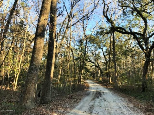 20 Huspa Creek Dr, Seabrook, SC 29940 (MLS #155778) :: RE/MAX Island Realty