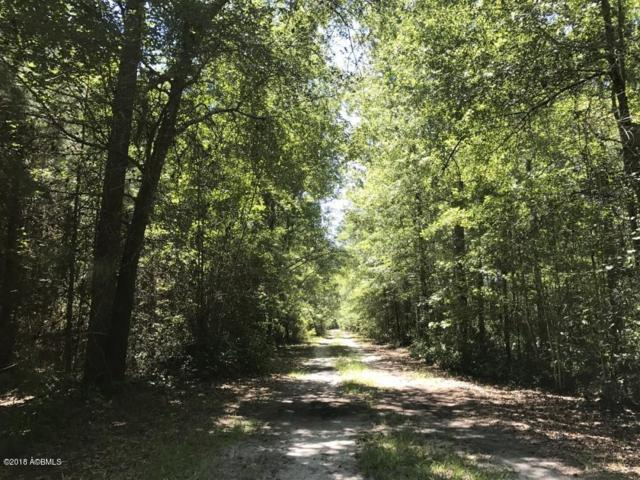 206 Sardis Road, Ridgeland, SC 29936 (MLS #155799) :: RE/MAX Island Realty