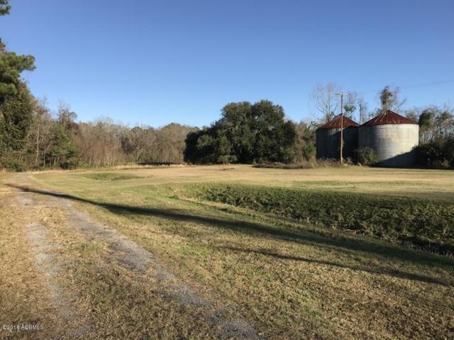 10 Fertile Road, Seabrook, SC 29940 (MLS #155800) :: RE/MAX Coastal Realty