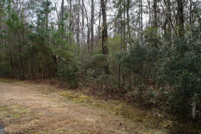 10 Blake Place, Seabrook, SC 29940 (MLS #155854) :: RE/MAX Island Realty