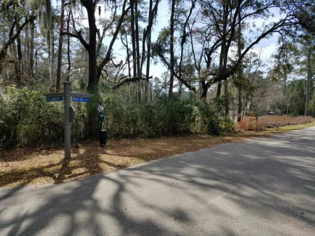 5 Wood Ibis Trail, Beaufort, SC 29907 (MLS #155861) :: RE/MAX Island Realty
