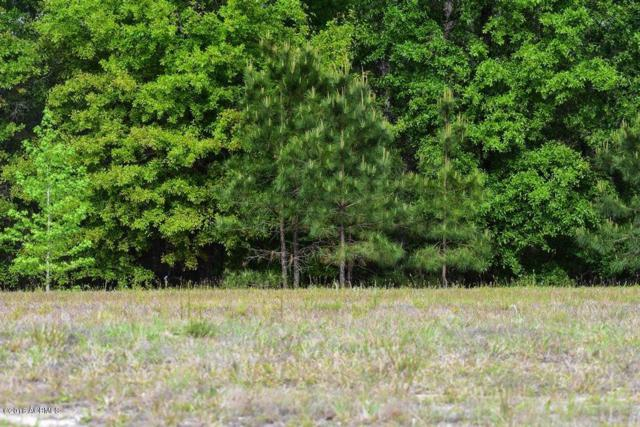 1262 Wiregrass Way, Hardeeville, SC 29927 (MLS #156587) :: RE/MAX Coastal Realty
