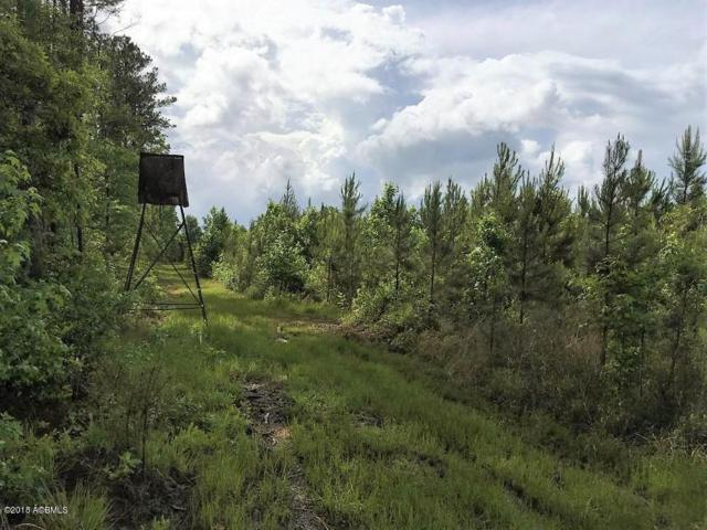 484 Azalea Patch Rd, Ruffin, SC 29475 (MLS #157266) :: RE/MAX Coastal Realty