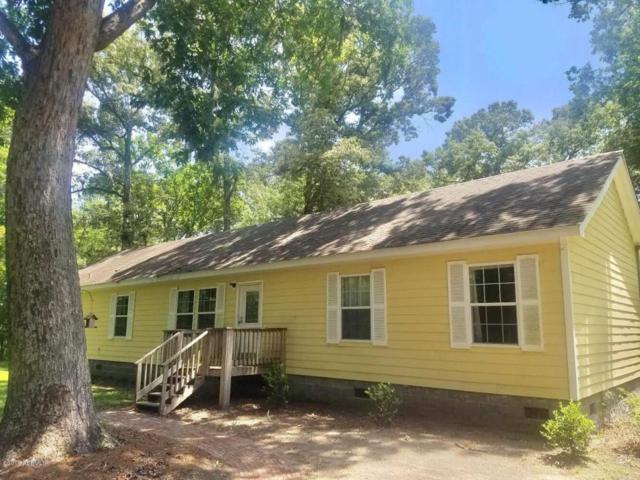 243 Springhill Road, Green Pond, SC 29446 (MLS #157443) :: RE/MAX Coastal Realty