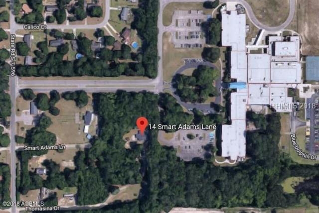 14 Smart Adams Lane, Beaufort, SC 29906 (MLS #157647) :: RE/MAX Island Realty