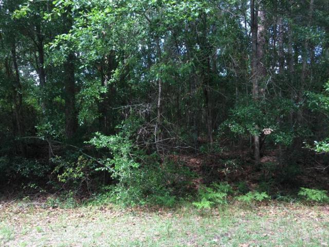 15 Egret Drive, Beaufort, SC 29907 (MLS #157752) :: RE/MAX Coastal Realty