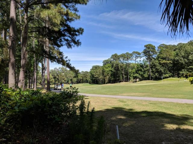 51 Winding Oak Drive, Okatie, SC 29909 (MLS #157892) :: RE/MAX Island Realty
