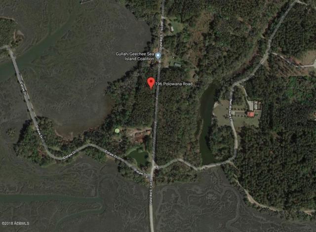 196 Polowana Road, St. Helena Island, SC 29920 (MLS #158158) :: RE/MAX Coastal Realty