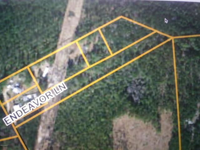0 Endeavor Lane, Walterboro, SC 29488 (MLS #158572) :: RE/MAX Coastal Realty