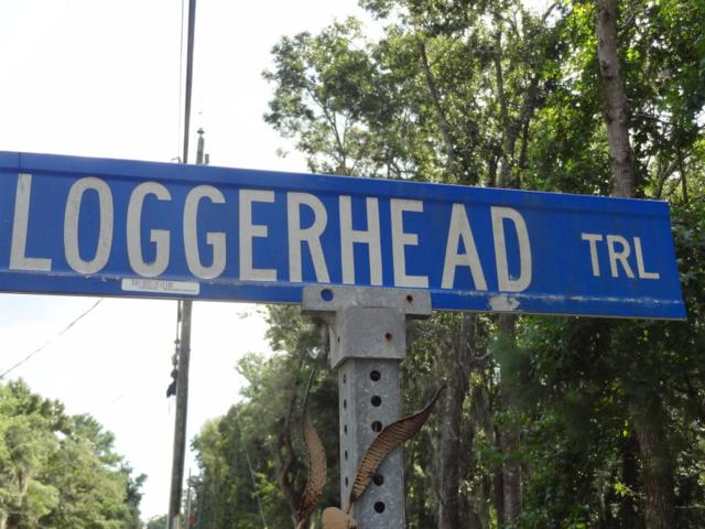 6 Loggerhead Trail, Lady's Island, SC 29907 (MLS #158878) :: RE/MAX Coastal Realty