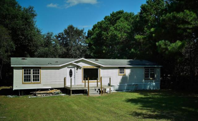 55 Delaney Circle, Seabrook, SC 29940 (MLS #158974) :: RE/MAX Island Realty