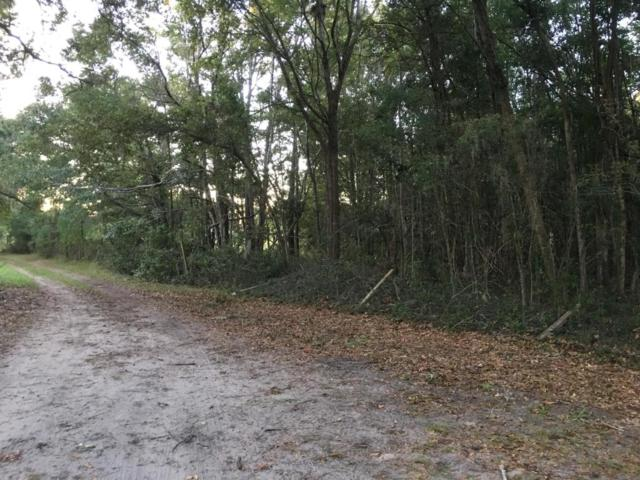 23 Lady Bug Lane, St. Helena Island, SC 29920 (MLS #159216) :: RE/MAX Coastal Realty