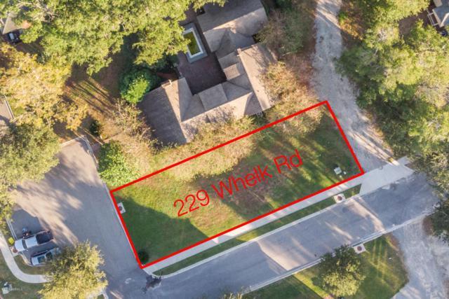 229 Whelk Road, Beaufort, SC 29906 (MLS #159561) :: RE/MAX Island Realty