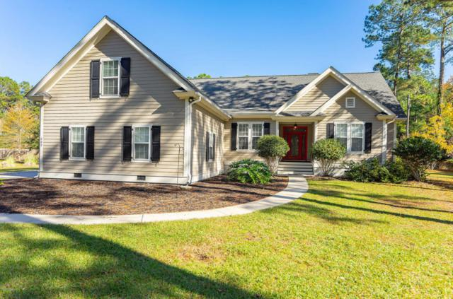 203 Green Winged Teal Drive S, Beaufort, SC 29907 (MLS #159812) :: RE/MAX Island Realty