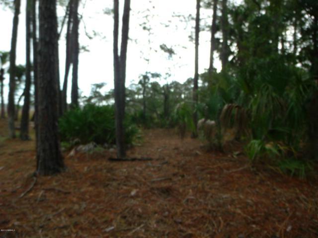 370 Blue Gill Road, Fripp Island, SC 29920 (MLS #159999) :: RE/MAX Island Realty