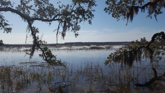 45 Grande Oaks Way, Beaufort, SC 29907 (MLS #160608) :: RE/MAX Coastal Realty