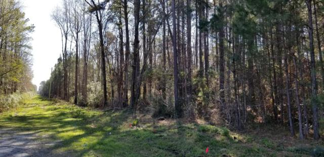Lot 35 Phase Iii New River Center Road, Hardeeville, SC 29927 (MLS #160845) :: MAS Real Estate Advisors