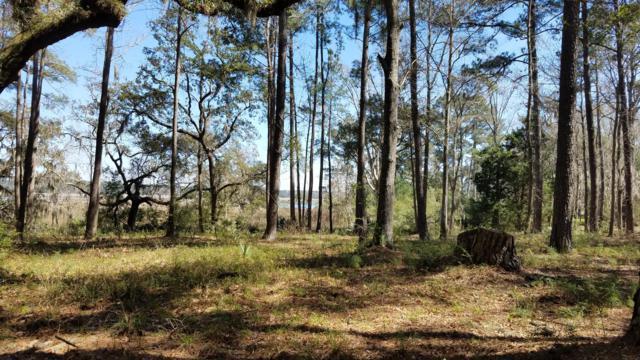 8878 Coosaw Scenic Drive, Ridgeland, SC 29936 (MLS #160935) :: RE/MAX Coastal Realty