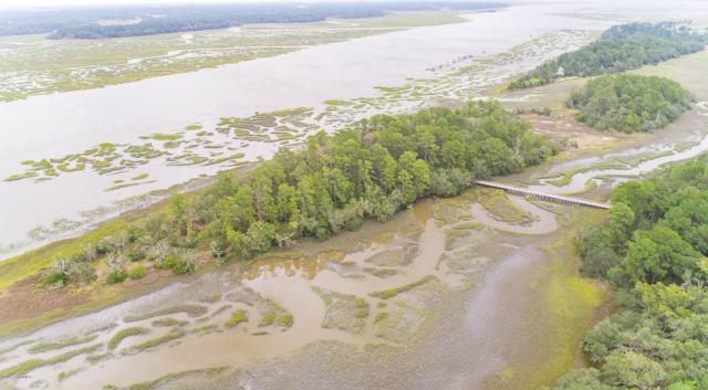 17 Breeze Island, Seabrook, SC 29940 (MLS #161517) :: RE/MAX Coastal Realty