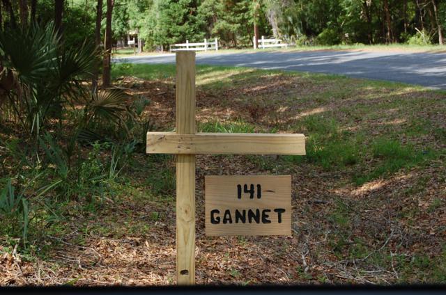 141 Gannet Point Road, Beaufort, SC 29907 (MLS #161905) :: Coastal Realty Group