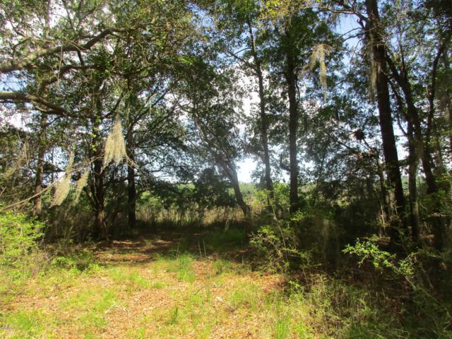 Tbd Tuckaway Run, Sheldon, SC 29941 (MLS #162008) :: RE/MAX Island Realty