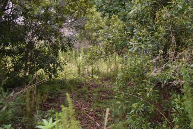 1511 Deanne Drive, Beaufort, SC 29902 (MLS #162274) :: RE/MAX Island Realty