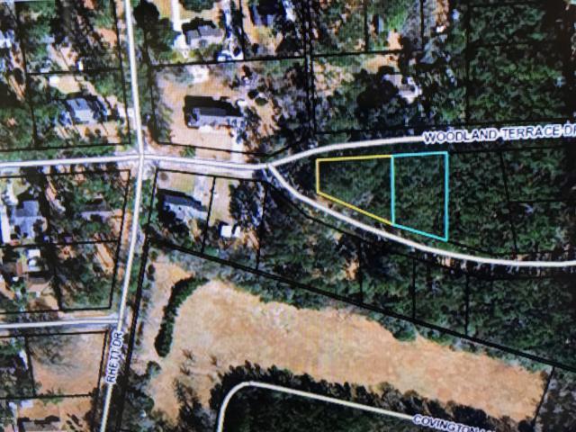 0 Woodland, Walterboro, SC 29488 (MLS #162381) :: RE/MAX Island Realty