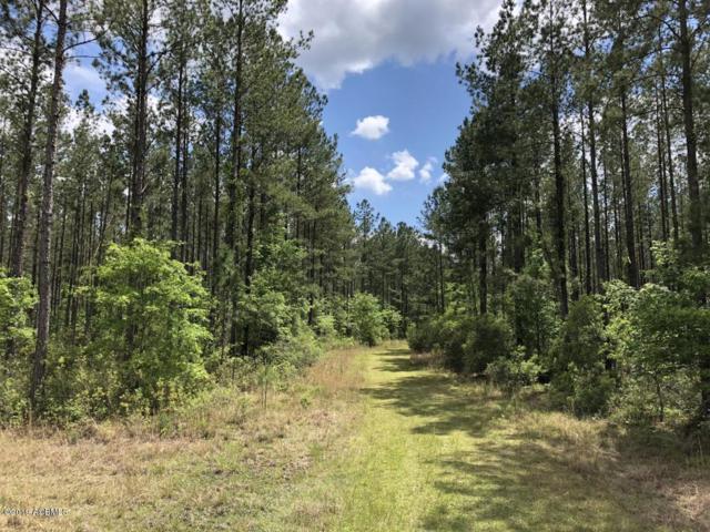 0 Gillison Branch Road, Ridgeland, SC 29936 (MLS #162453) :: RE/MAX Island Realty