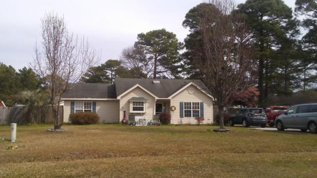 8 Wegeon Lane, Beaufort, SC 29906 (MLS #162894) :: RE/MAX Island Realty