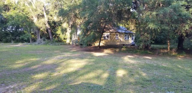 23 Blazing Star Lane, St. Helena Island, SC 29920 (MLS #162939) :: RE/MAX Island Realty