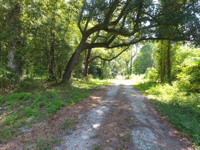 9539 Augusta Highway, Smoaks, SC 29481 (MLS #163088) :: RE/MAX Island Realty