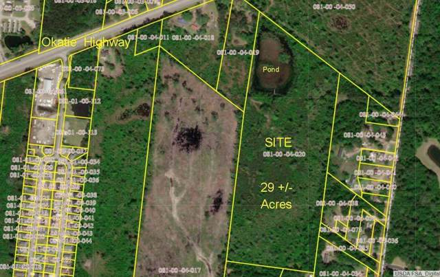 6278 N Okatie Highway, Okatie, SC 29909 (MLS #163784) :: MAS Real Estate Advisors