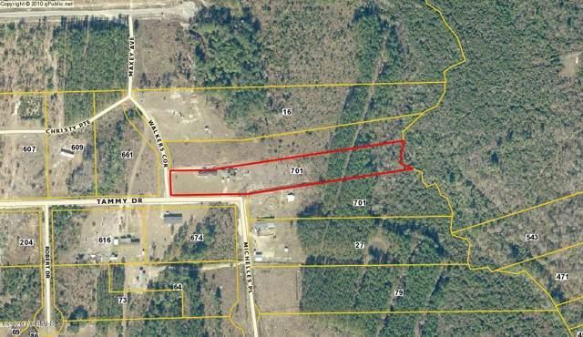 701 Tammy Drive, Ridgeland, SC 29936 (MLS #164853) :: RE/MAX Island Realty