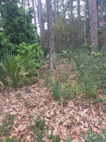 Address Not Published, Okatie, SC 29909 (MLS #165681) :: Coastal Realty Group