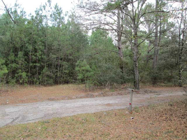 000 Catfish Circle, Ridgeland, SC 29936 (MLS #165808) :: RE/MAX Coastal Realty