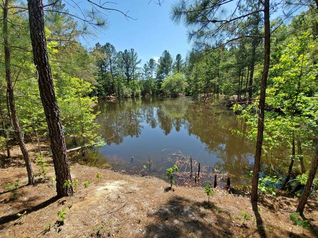 000 Malphrus Road, Ridgeland, SC 29936 (MLS #165988) :: Coastal Realty Group