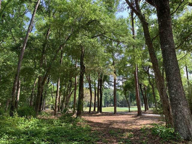 307 Westbrook Road, Dataw Island, SC 29920 (MLS #166059) :: RE/MAX Island Realty