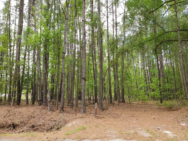 0 Rivers Hill Road, Ridgeland, SC 29936 (MLS #166456) :: Coastal Realty Group