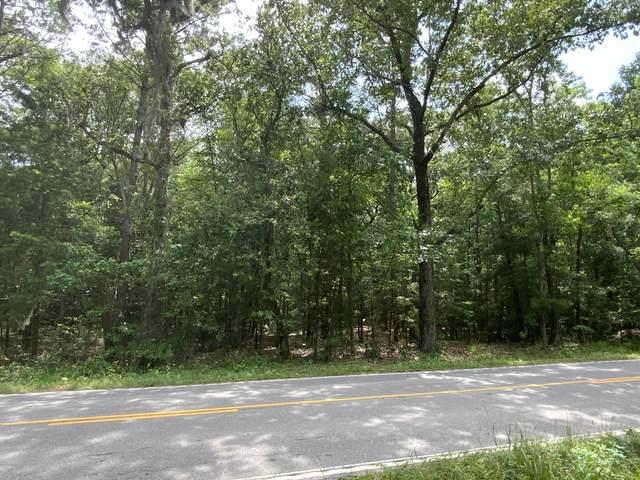 802 Old Sheldon Church Road, Yemassee, SC 29945 (MLS #166523) :: RE/MAX Island Realty