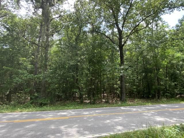 806 Old Sheldon Church Road, Yemassee, SC 29945 (MLS #166524) :: RE/MAX Island Realty