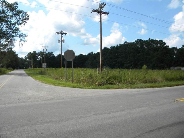 5607 Lowcountry Drive, Ridgeland, SC 29936 (MLS #166879) :: RE/MAX Island Realty