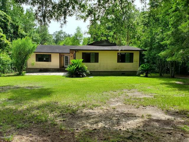664 Wiggins Road, Green Pond, SC 29446 (MLS #167094) :: Coastal Realty Group