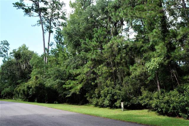 18 Broadview Drive, Ridgeland, SC 29936 (MLS #167128) :: RE/MAX Island Realty