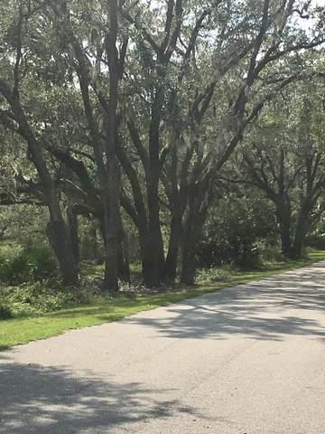 10 Stripland Way, St. Helena Island, SC 29920 (MLS #167240) :: RE/MAX Island Realty