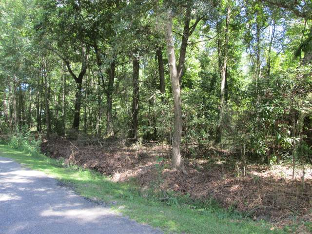 50 S Beach   Hwy27-266 Street #0, Ridgeland, SC 29936 (MLS #167294) :: Coastal Realty Group