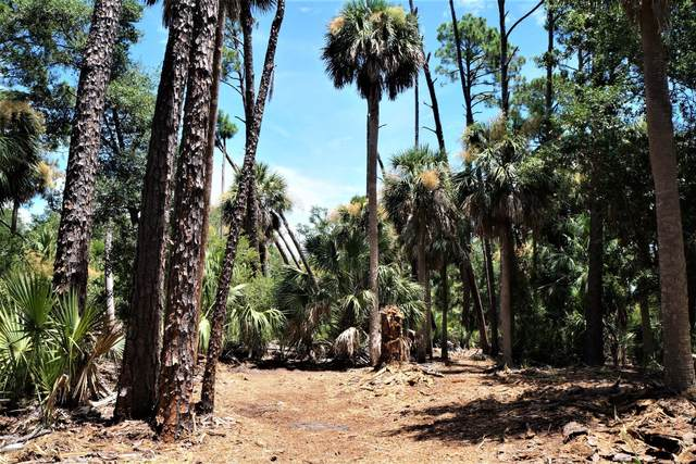 29 Fiddlers Trace Road, Fripp Island, SC 29920 (MLS #167346) :: RE/MAX Island Realty