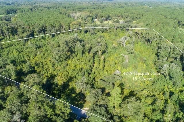 47 Huspah Court N, Seabrook, SC 29940 (MLS #168038) :: Coastal Realty Group