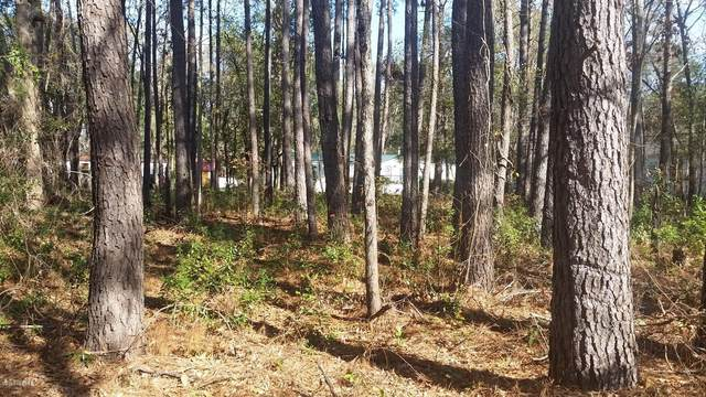 176 County Shed Road, Beaufort, SC 29906 (MLS #168119) :: RE/MAX Island Realty