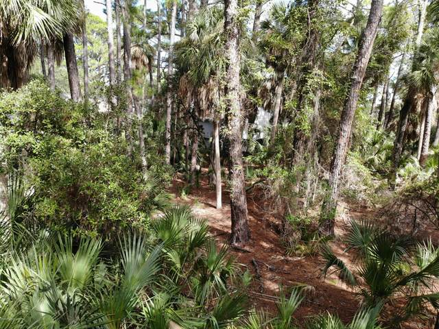 848 Marsh Dunes Road, Fripp Island, SC 29920 (MLS #168509) :: Coastal Realty Group