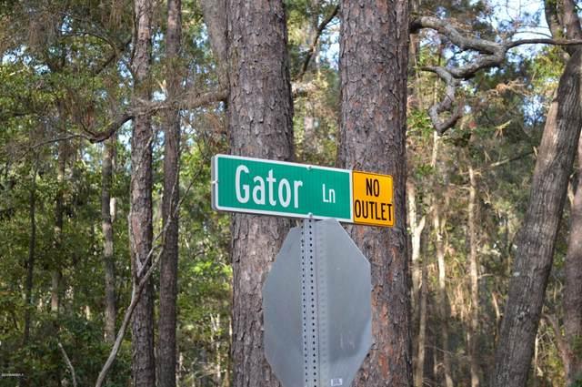 106 Gator Lane, Beaufort, SC 29907 (MLS #168533) :: Coastal Realty Group